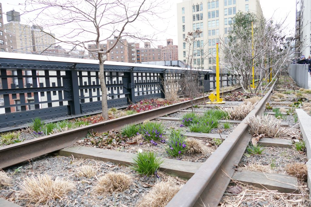 New York: The Highline