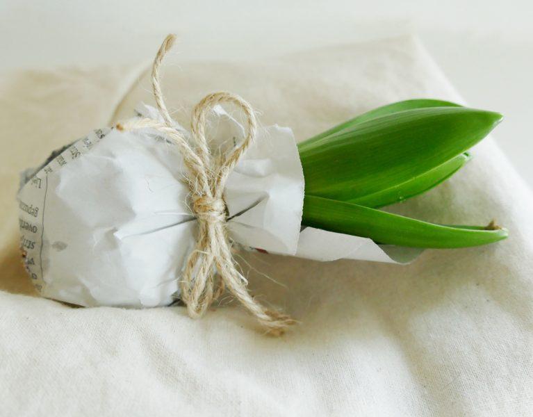 bloembol jasje