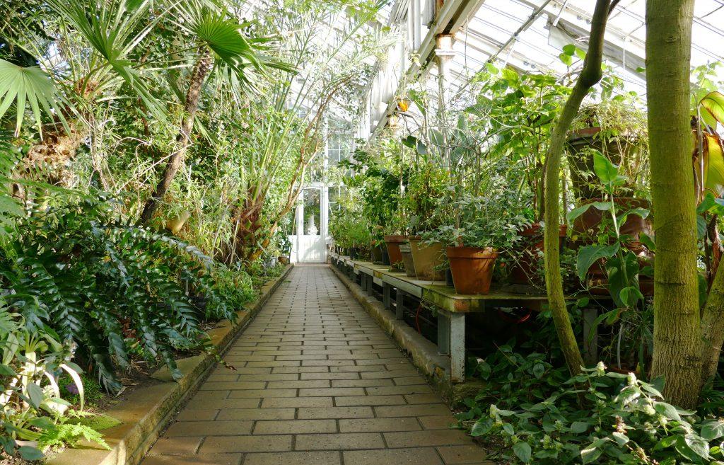 Kopenhagen - Botanisk Have