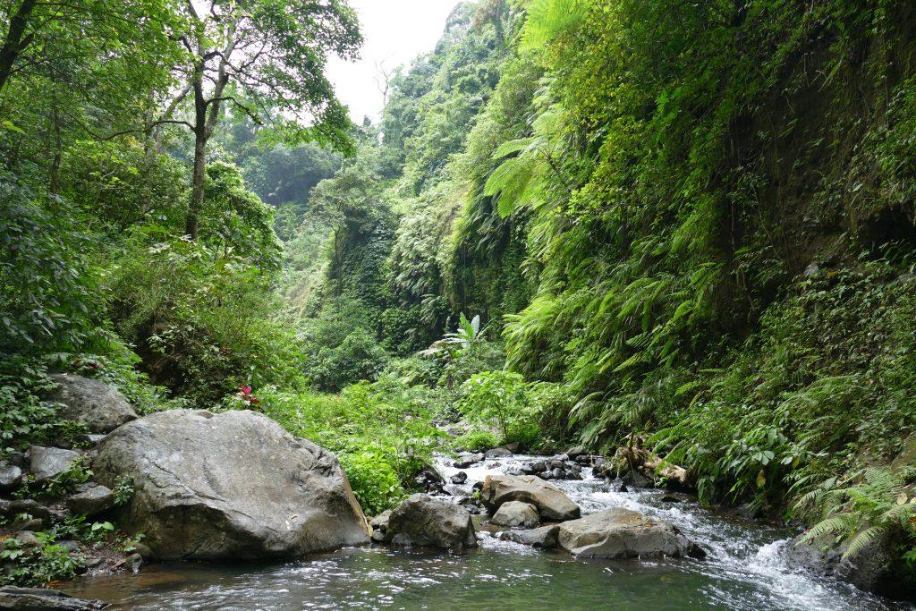 mijn favoriete wandelingen op Bali