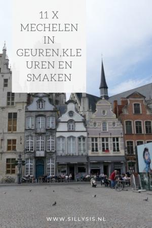 9 x Mechelen in geuren,kleuren en smaken