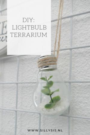 DIY: lightbulb terrarium
