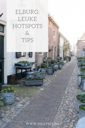Vestingstad Elburg | leuke hotspots en tips