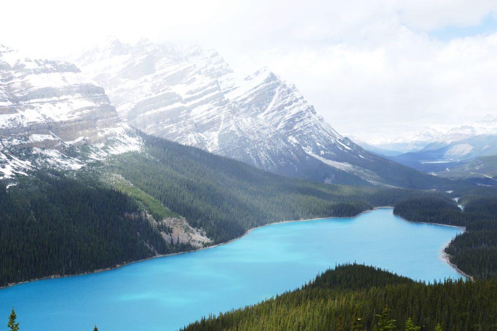 Canadese Rockies: Peyto Lake