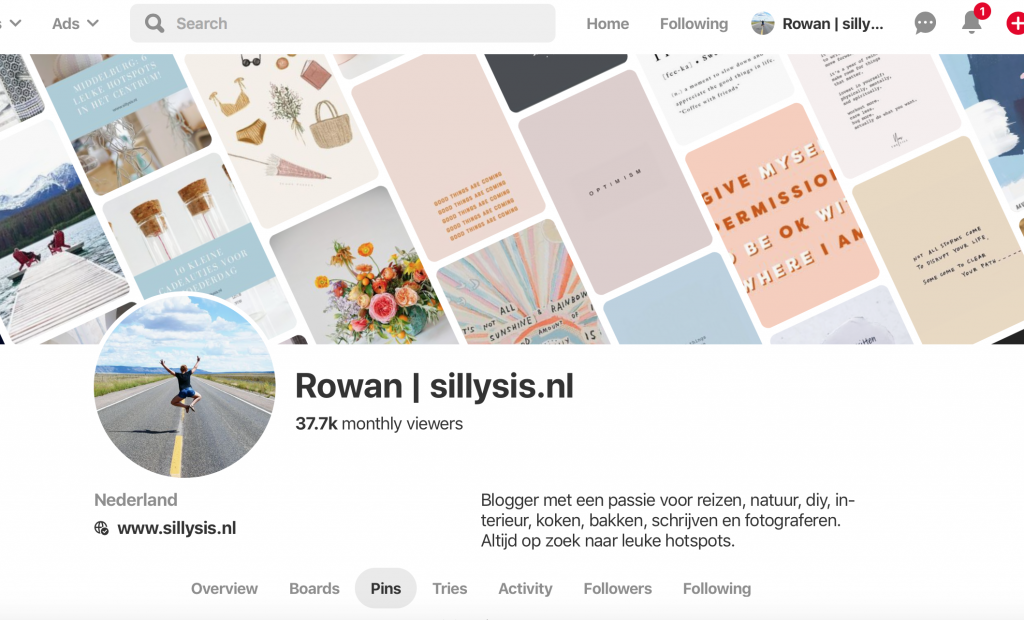 Pinterest sillysis.nl