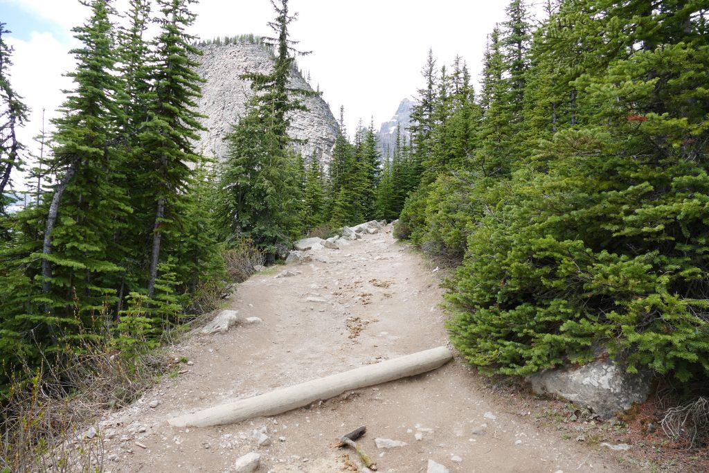 Banff National Park- Lake Agnes Trail3