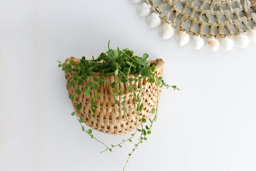 Minimalistische plantenhanger van riet. Upcycling project met vondst uit de kringloopwinkel