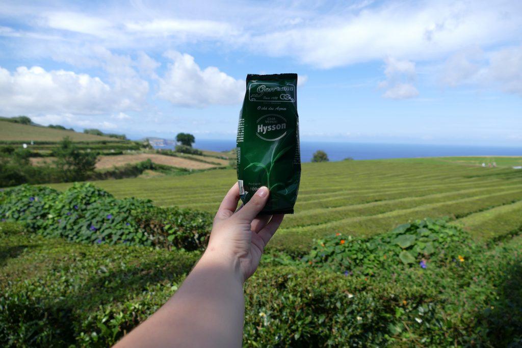 Proef een kopje thee op de enige theeplantage van Europa