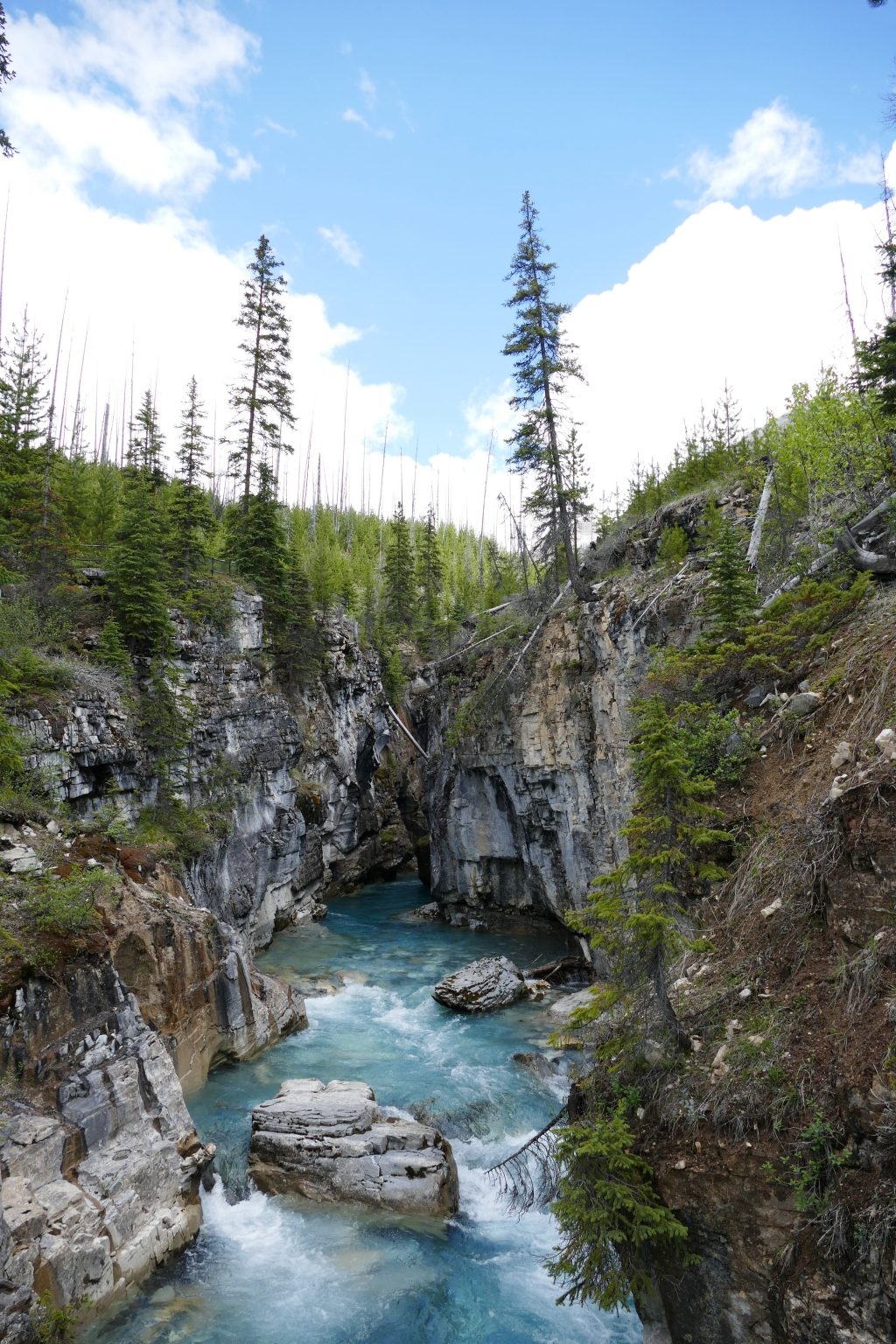 Kootenay National Park: Marble Canyon