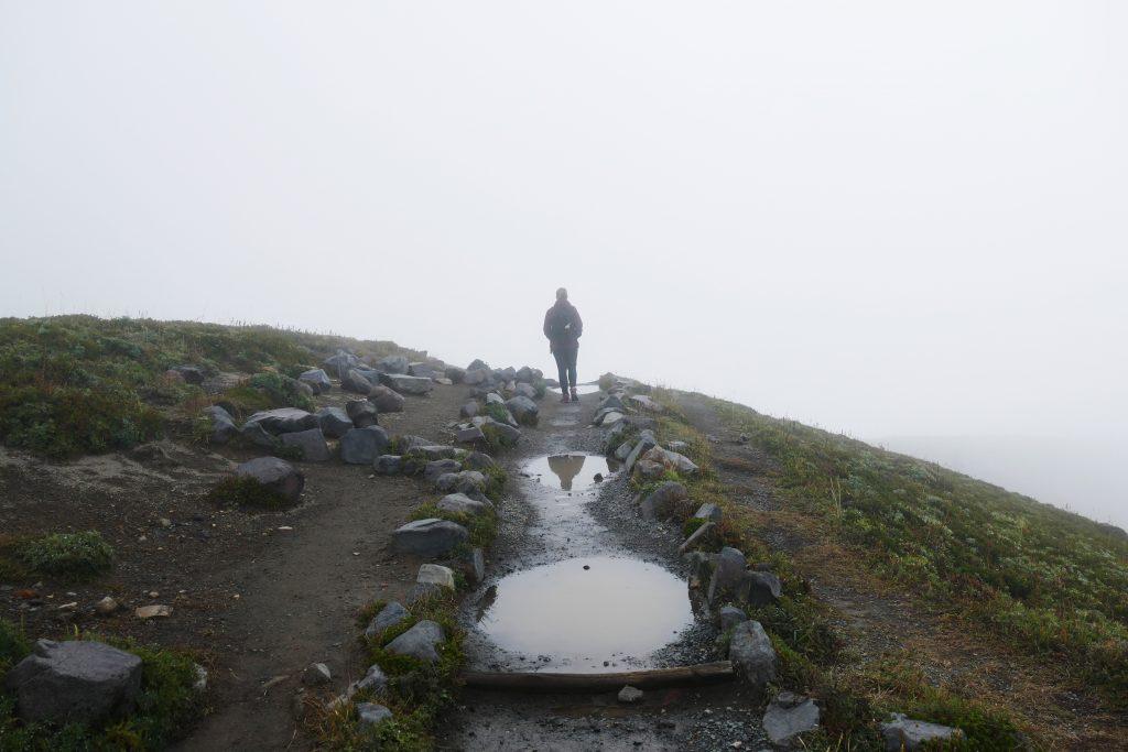 Mount Rainier Skyline Trail