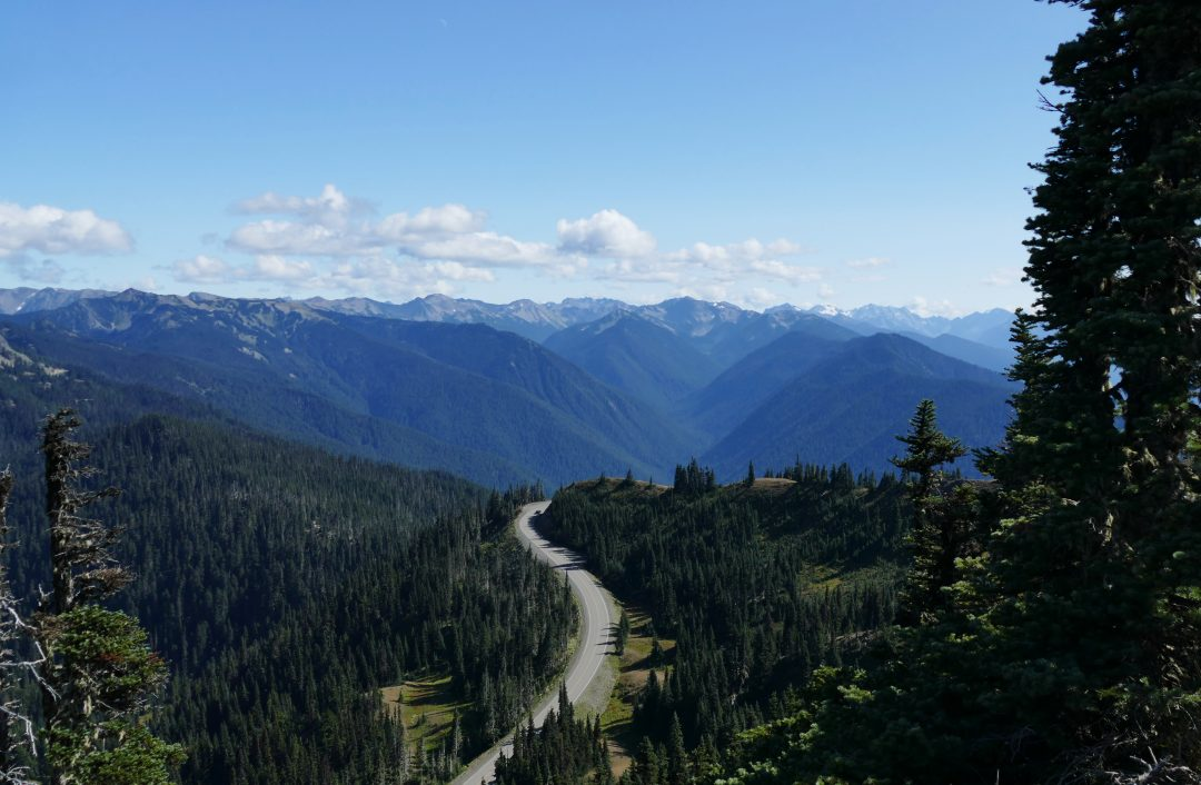 Pacific North West: Olympic National Park