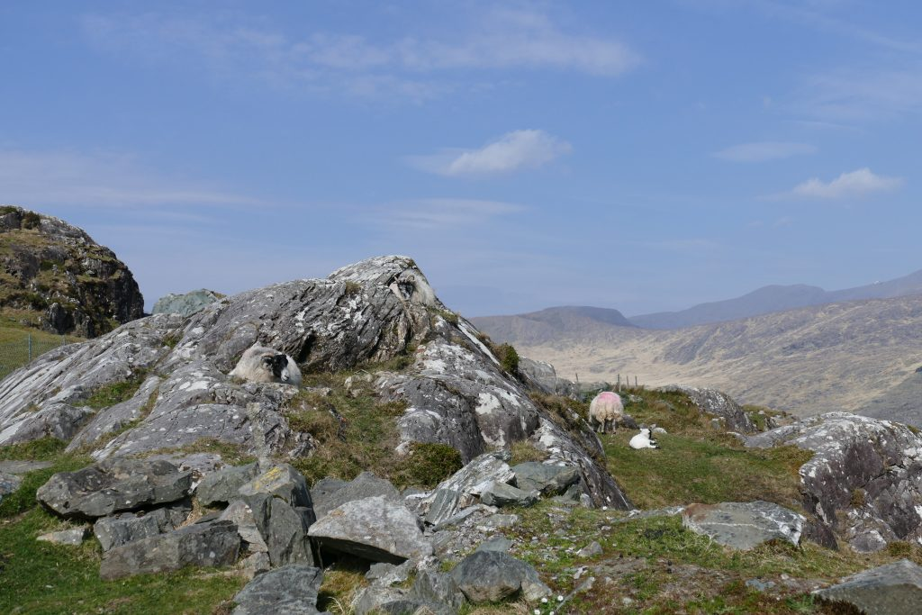 Ring of Kerry: Moll's Gap