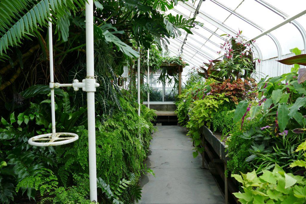 olunteer Park Conservatory