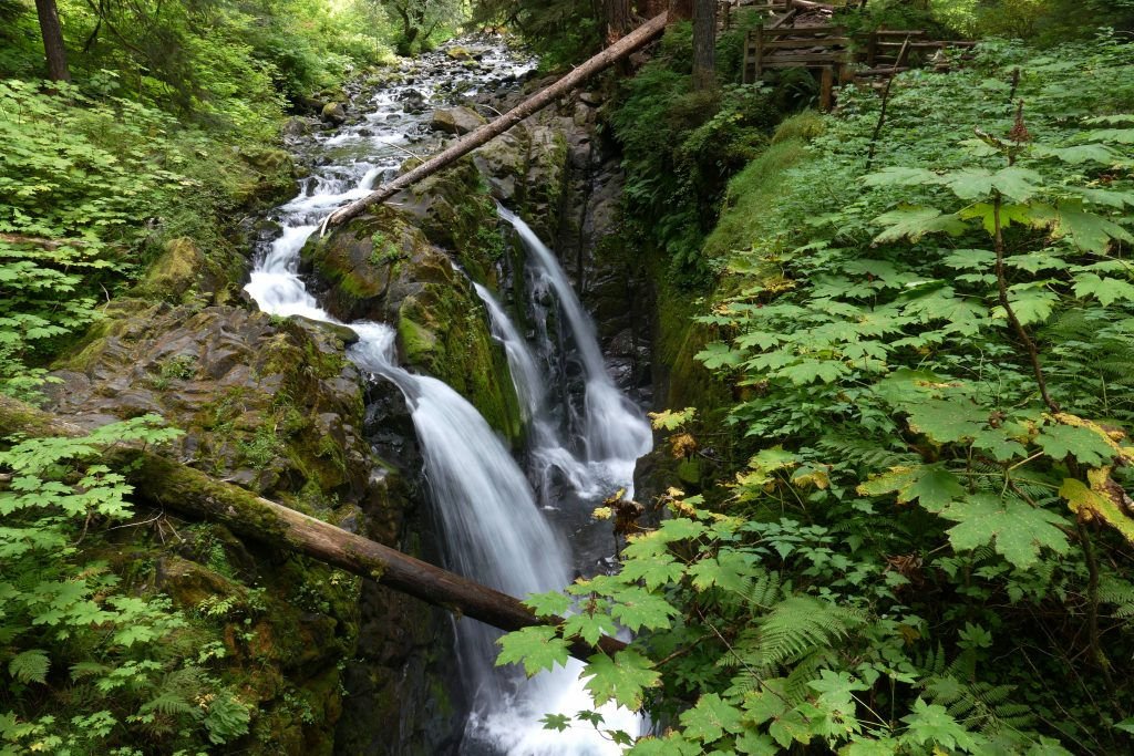 Olympic National Park: Sol Duc Falls