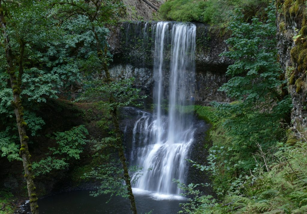 Silver Falls State Park: Lower South Falls