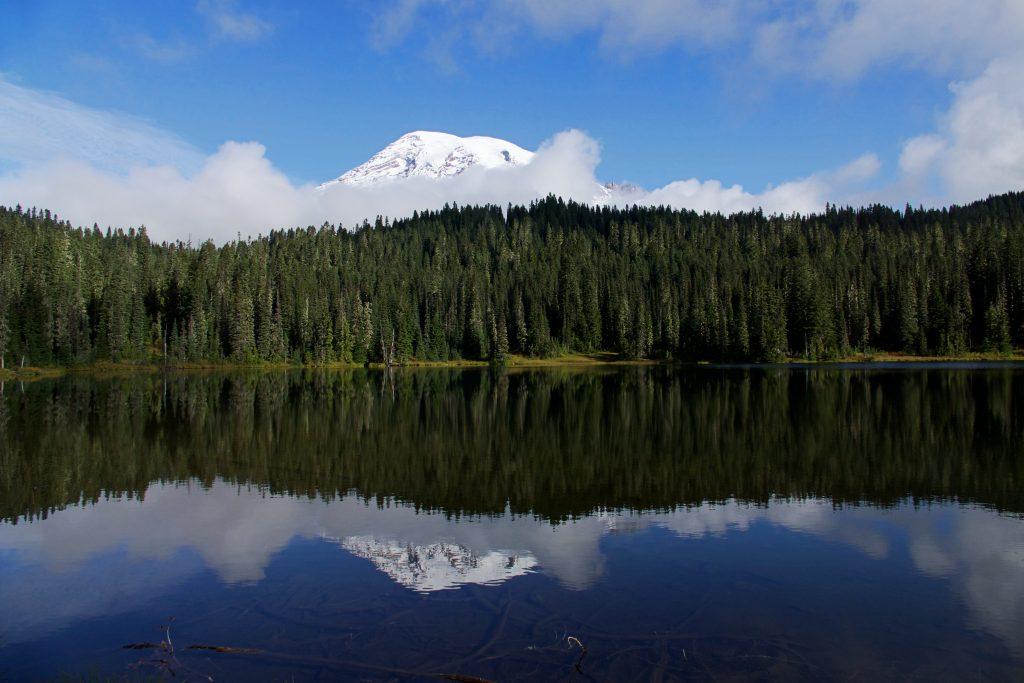 Mount Rainier: ongerepte wildernis in de staat Washington