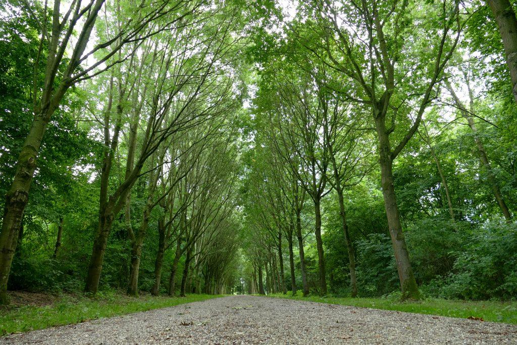 Natuurpark Lelystad: Wilde dieren spotten in Flevoland