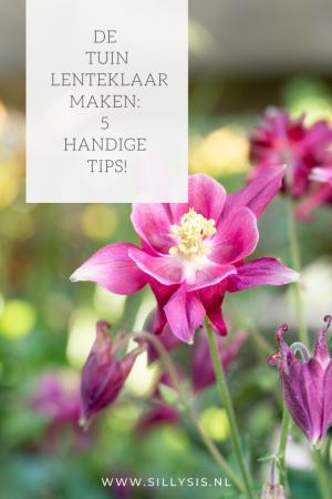 De tuin lenteklaar maken: 5 handige tips!