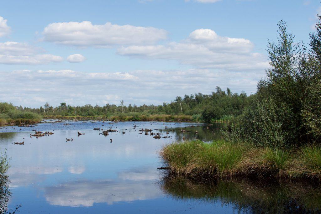 Doen in Noord-Brabant: De Groote Peel