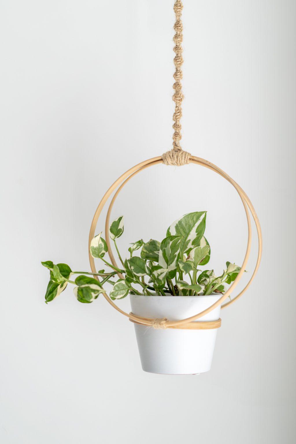 DIY's in mijn interieur: plantenhanger van borduurringen