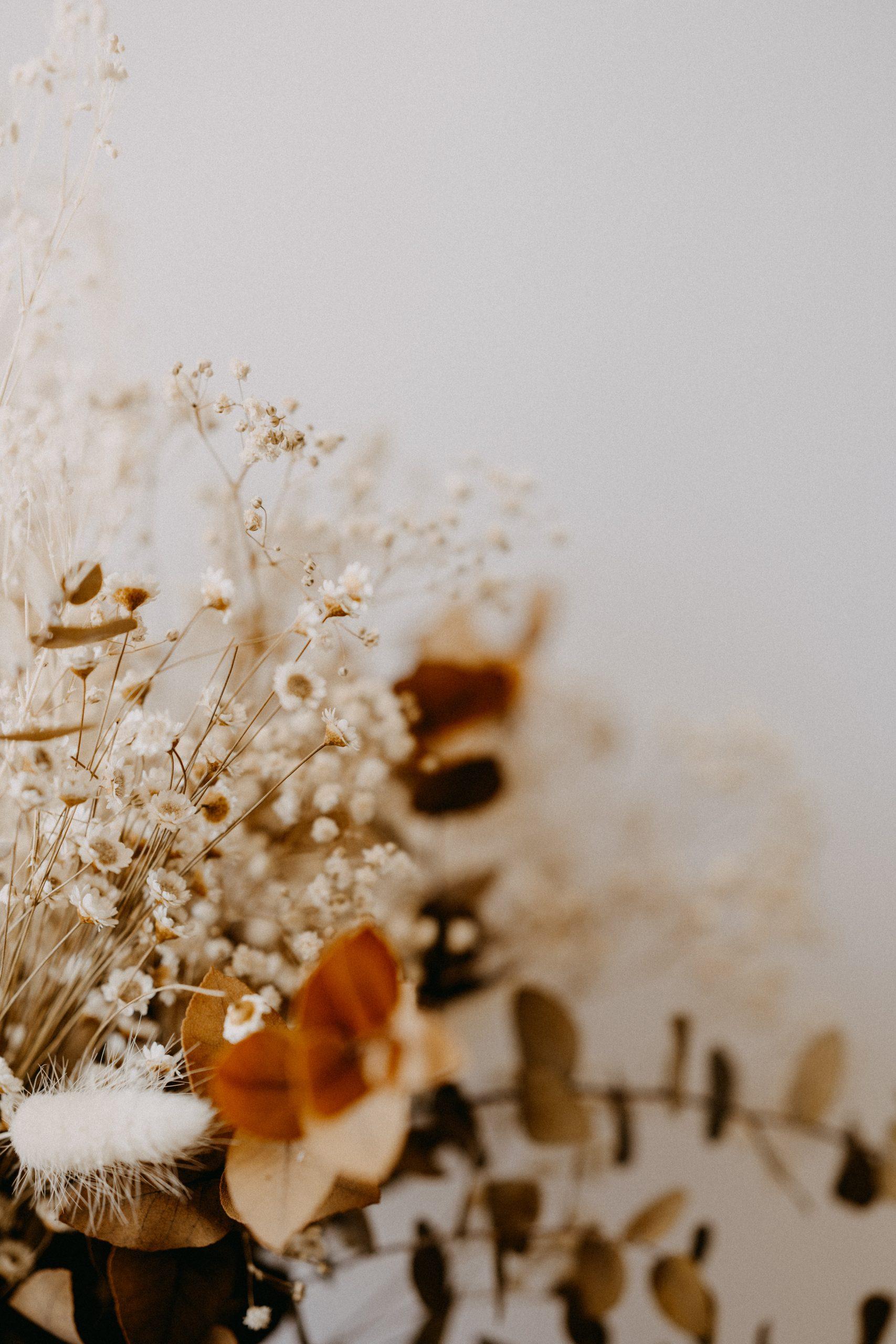 Zelf bloemen drogen: alle tips op een rijtje!
