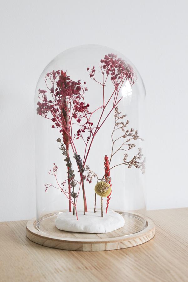 Droogbloemen onder een stolp